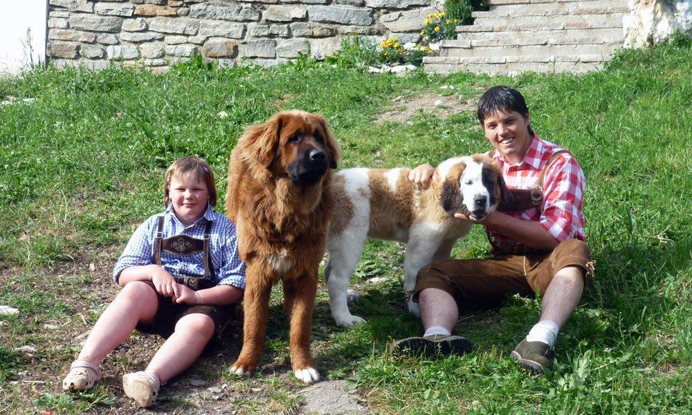 Mit Kindern Urlaub auf dem Bauernhof machen